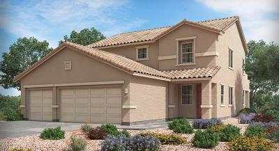 Vail AZ Single Family Home For Sale: $308,990