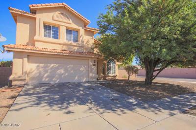 Tucson Single Family Home For Sale: 9793 E Paseo Juan Tabo