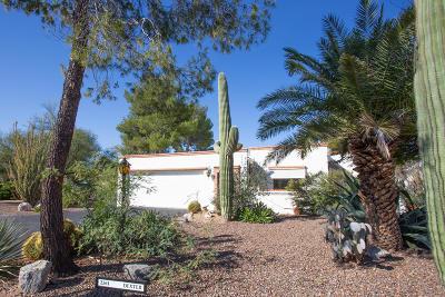 Tucson Single Family Home For Sale: 2561 N Avenida San Valle