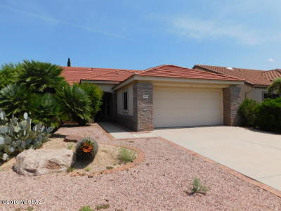 Tucson Single Family Home For Sale: 2327 E Montrose Canyon Drive