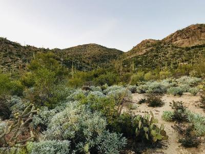 Residential Lots & Land For Sale: 14703 N Granite Peak Place #269