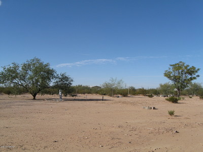 Tucson Residential Lots & Land For Sale: 13131 W Painted Prairie Way