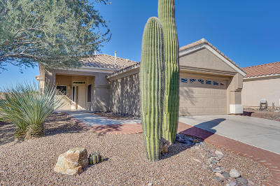 Marana Single Family Home For Sale: 5193 W Desert Song Place