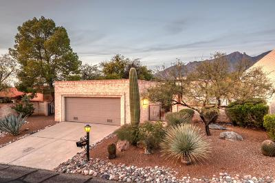 Tucson Single Family Home For Sale: 4171 E Pontatoc Canyon Drive