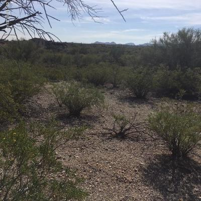 Residential Lots & Land For Sale: 6005 N Panorama Drive