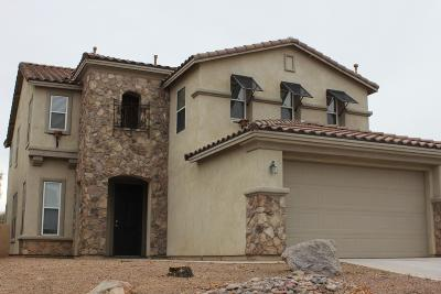 Pima County Single Family Home For Sale: 375 W Calle La Bolita