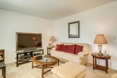 Pima County Townhouse For Sale: 4187 N Western Winds Drive