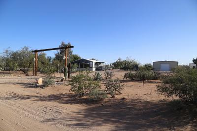 Tucson Single Family Home For Sale: 13665 W Yankee Ranch Road
