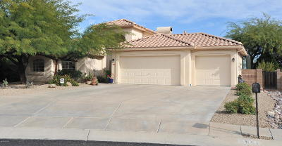 Tucson Single Family Home For Sale: 2950 W Corte Madelena