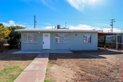 Pima County Single Family Home For Sale: 3544 E Sylvane Street