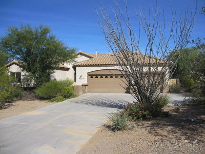 Pima County, Pinal County Single Family Home For Sale: 17319 S Azure Sky Trail