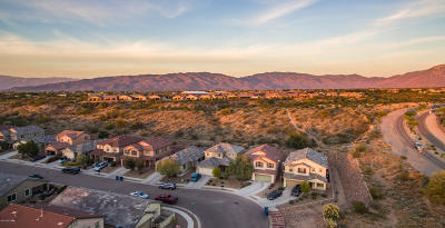 Vail Single Family Home Active Contingent: 10469 S Boot Hill Way