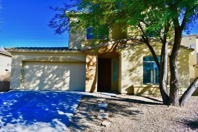 Sahuarita Single Family Home For Sale: 167 E Placita Lago Del Mago