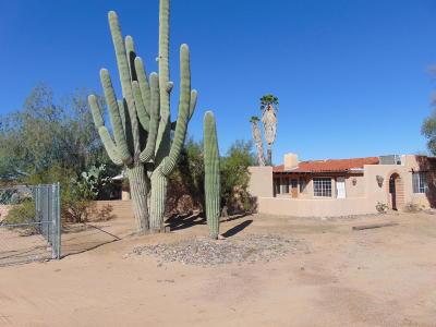 Tucson Single Family Home For Sale: 7275 N Sandario Road