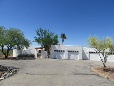 Tucson Single Family Home For Sale: 7052 S Ave Del Potrillo