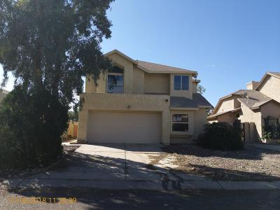 Pima County Single Family Home For Sale: 3519 W Avenida Obregon