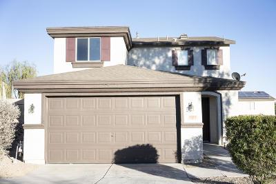 Starr Pass, Starr Pass Golf Casitas, Starr Pass Heights (1-114), Starr Pass Shadows, Starr Ridge (1-105), Starrpass, Starrs Resub Tucson Blk 123 Single Family Home For Sale: 1327 S Burdock Drive