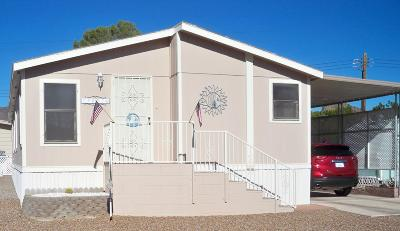 Pima County Manufactured Home For Sale: 5802 W Rocking Cir Street