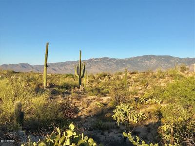 Oro Valley Residential Lots & Land For Sale: 257 E Beekeeper Trail #12