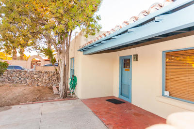 Tucson Single Family Home For Sale: 1309 N Dodge Boulevard