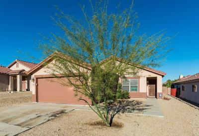 Tucson Single Family Home For Sale: 3888 W Oak Springs Trail