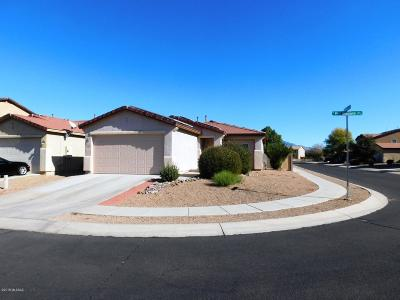 Pima County Single Family Home For Sale: 9228 N Red Diamond Avenue