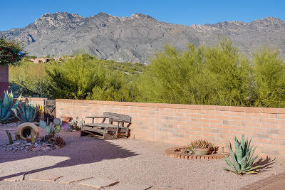 Tucson Single Family Home Active Contingent: 5074 N Via Gelsomino
