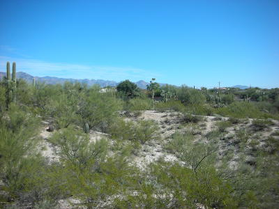 Tucson Residential Lots & Land For Sale: 4041 N San Simeon Drive #2