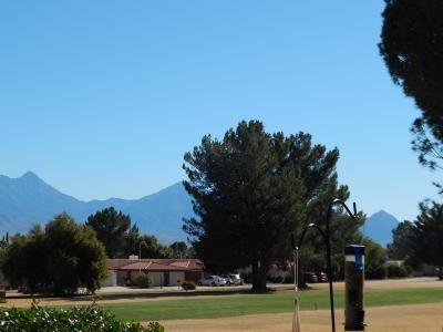 Green Valley Single Family Home For Sale: 159 E Paseo De Golf
