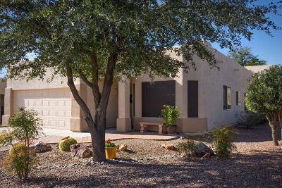 Tucson Single Family Home For Sale: 8919 N Treasure Mountain Drive
