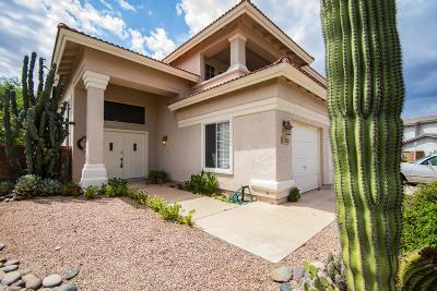 Tucson Single Family Home For Sale: 1134 W Shoal Creek Lane