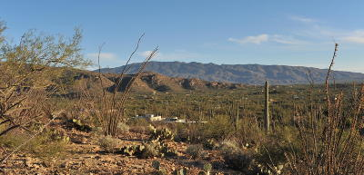 Residential Lots & Land For Sale: E Mira Vista Canyon Place #4
