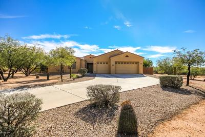 Tucson Single Family Home For Sale: 12911 W Zebra Aloe Place