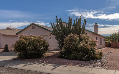 Tucson Single Family Home For Sale: 3637 W Sundial Place