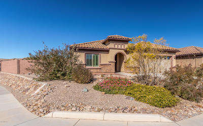 Vail Single Family Home Active Contingent: 13939 E Barouche Drive