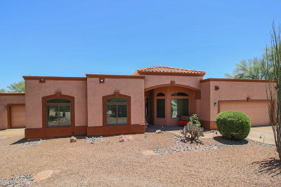 Sahuarita Single Family Home Active Contingent: 1659 W Placita Del Zocalo