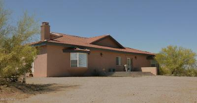 Pima County, Pinal County Single Family Home For Sale: 10670 E Escalante Road