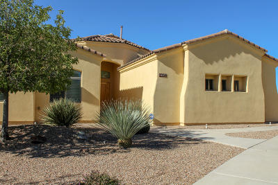 Vail Single Family Home Active Contingent: 14457 E Desert Plume Court