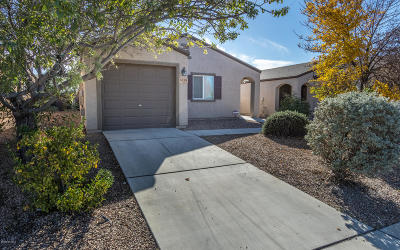 Pima County, Pinal County Single Family Home Active Contingent: 5158 E Desert Straw Lane