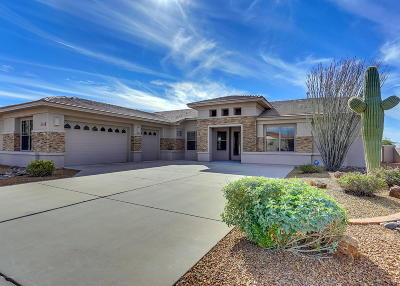 Single Family Home For Sale: 10730 E Mica Meadow Drive