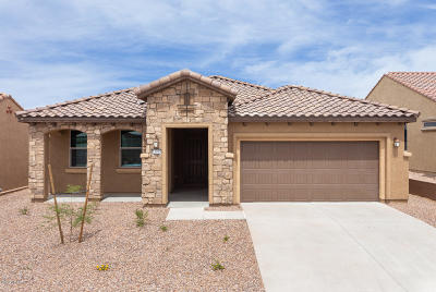 Marana Single Family Home For Sale: 13985 N Bright Angel Trail