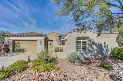 Oro Valley Single Family Home For Sale: 12735 N Piping Rock Road