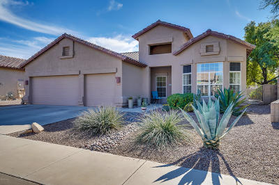Tucson Single Family Home For Sale: 2665 W Hidden Bluffs Drive