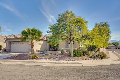 Tucson Single Family Home For Sale: 9704 N Sandy Mesa Place