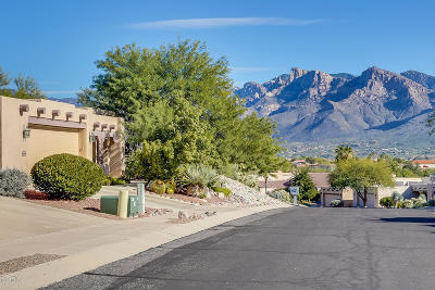 Tucson Single Family Home For Sale: 1498 Fairway Wood Court