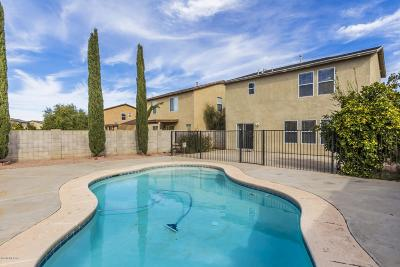 Pima County Single Family Home For Sale: 6910 S Harrier Loop