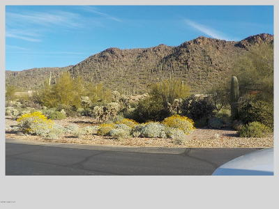 Residential Lots & Land For Sale: 2081 S Double K Place #181