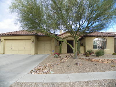 Oro Valley Single Family Home For Sale: 13756 N Tessali Way