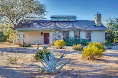 Pima County Single Family Home For Sale: 2220 E Kleindale Road