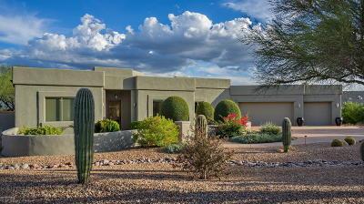 Tucson Single Family Home For Sale: 11950 E Settlers Trail